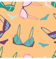 underwear send pattern vector image