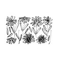 chamomile hand drawn black paint set vector image