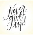 never give up hand drawn inspirational quote vector image vector image