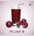 set of plum juice and fresh ripe fruits vector image vector image