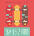 skate poster vector image