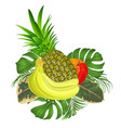 tropical fruit set with tropical leaves vector image