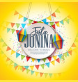 festa junina festival design with party flags and vector image