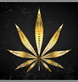 gold leaf cannabis vector image