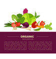 organic food poster background of fresh vegetables vector image vector image