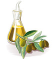 sprig and a cruet of olive oil vector image vector image