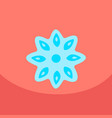 stars of anise isolated on the color background vector image vector image