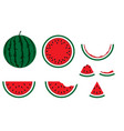 watermelon tasty vegetarian dessert nature vector image