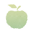 apple spiral vector image