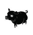 big pig with the curly tail black with white vector image vector image