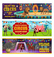 circus animals show and performance vector image vector image