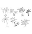 palm trees coloring book beautiful palma vector image vector image
