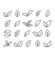 set of hand drawn linear black leaf icons vector image