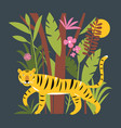 tiger in jungle among palm leaves vector image vector image