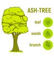 color green sketch tree vector image vector image