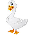 cute cartoon swans vector image vector image