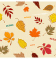 doodle autumn leaves pattern seamless vector image