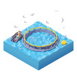 isometric feeding fish at fish farm vector image