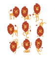 set of funny african lion in different actions vector image