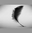 black fluffy feather with shadow realistic vector image
