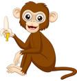 cartoon funny monkey holding banana vector image vector image
