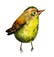Cute birds for your design watercolor vector image vector image