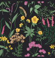 natural seamless pattern with gorgeous wildflowers vector image