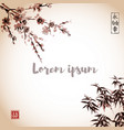 bamboo leaves and sakura blossom vector image