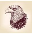 Eagle - vector image vector image