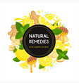 natural home remedies vector image vector image