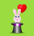 rabbit with red balloon in black magic cylinder vector image