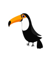 Toucan Toco Big yellow beak Beautiful Exotic vector image vector image