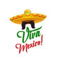 viva mexico sombrero with mustaches vector image vector image