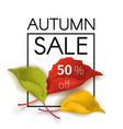 autumn sale poster with a bouquet of leaves vector image