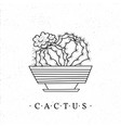 cactus in a pot hand-drawn cartoon style vector image