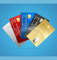 credit plastic card set vector image vector image
