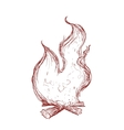 Flame icon Fire design graphic vector image vector image