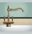 vintage style faucet composition vector image vector image