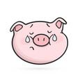 crying emoticon icon emoji pig vector image