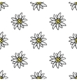 Edelweiss flower seamless pattern background vector image vector image