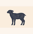 lamb sheep concept design of farm animals vector image