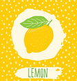 Lemon hand drawn sketched fruit with leaf on vector image