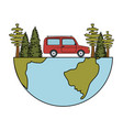 pines trees forest scene with car vector image