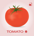 single fresh ripe tomato isolated on a background vector image vector image