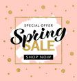 spring sale banner design template vector image