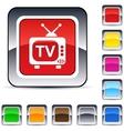 TV square button vector image vector image