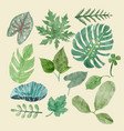 botanical clipart set of green leaves tropical vector image