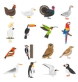 Bird Flat Color Icons Set vector image