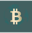 bitcoin gold vector image