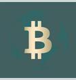 bitcoin gold vector image